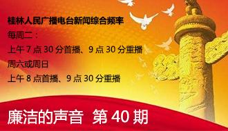 廉洁的声音第40期 灵川村两委警示教育