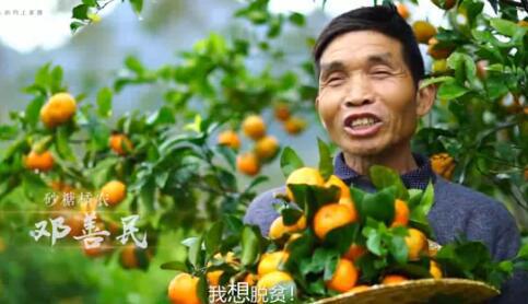 公益广告片:我能脱贫
