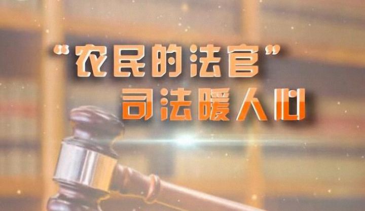 """【爱廉说第46期】""""农民的法官""""司法暖民心"""