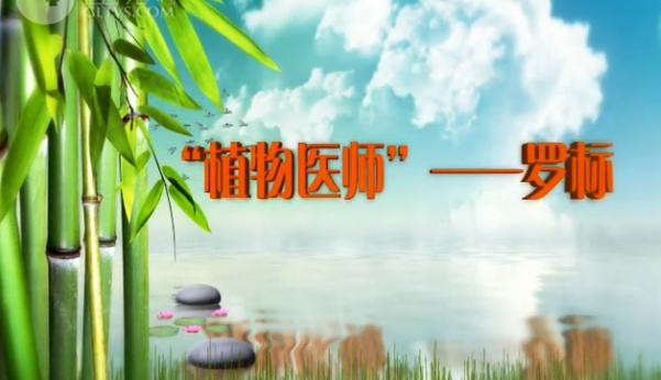 【爱廉说第70期】植物医师——罗标