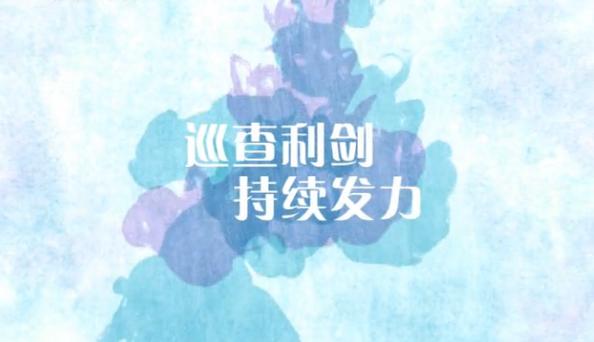 【爱廉说第84期】巡察利剑持续发力 贪腐违纪无处遁形