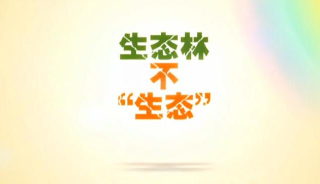 【爱廉说第94期】生态林不生态(上)