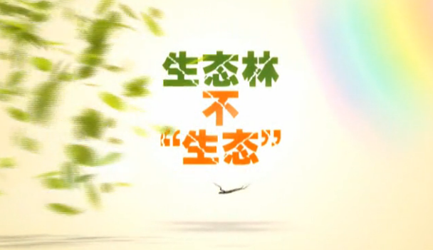 【爱廉说第95期】生态林不生态(下)