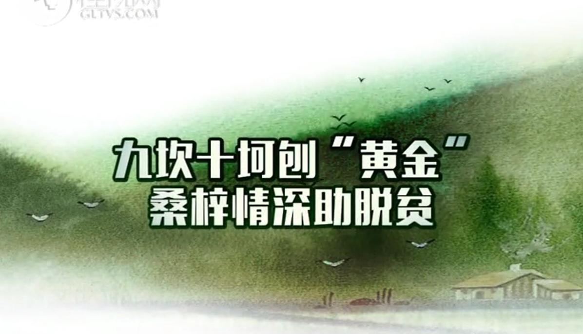 """【爱廉说第123期】九坎十坷刨""""黄金"""" 桑梓情深助脱贫"""