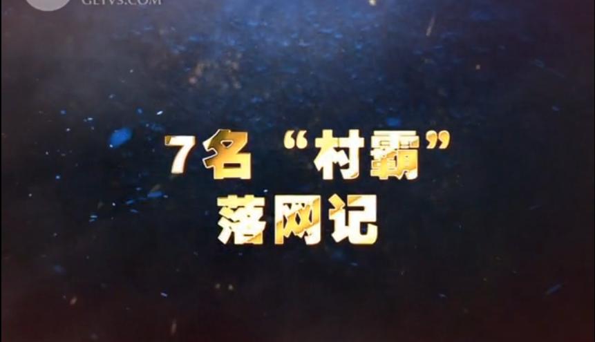 """【爱廉说第126期】7名""""村霸""""落网记"""