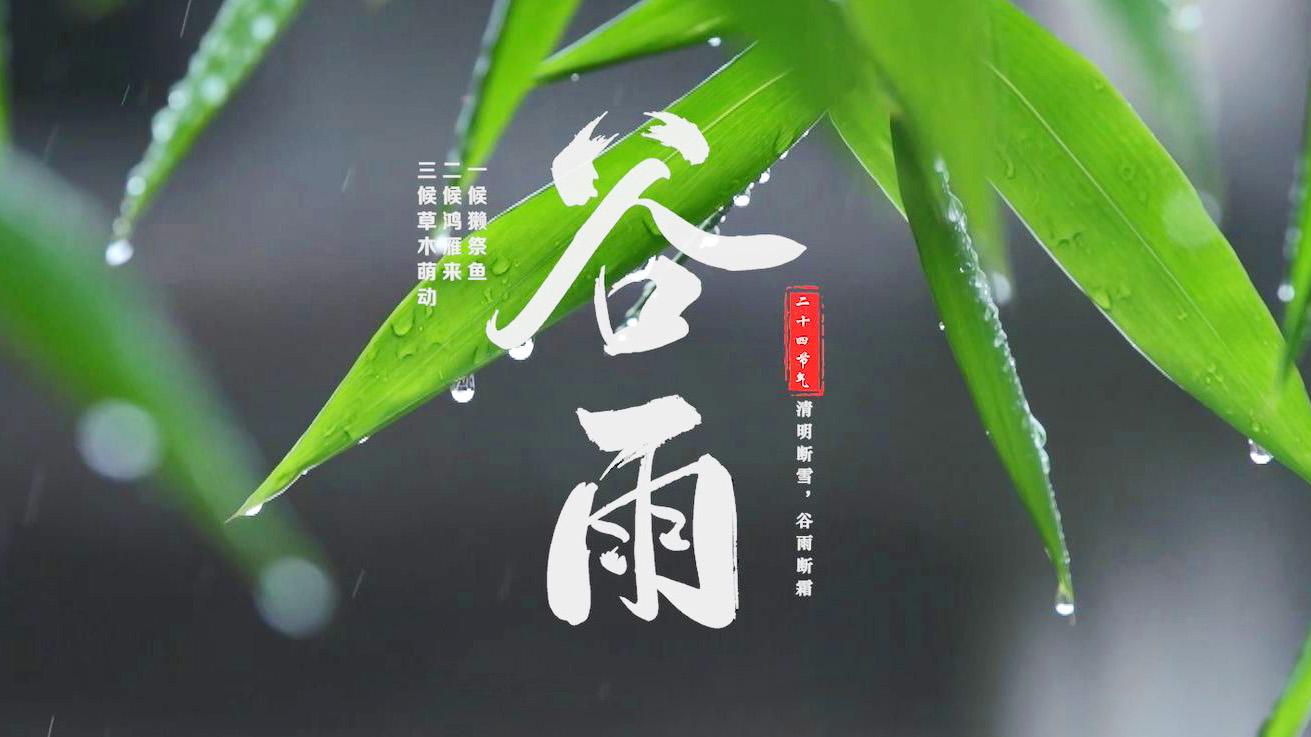 谷雨时节,体味清新养德、淡泊明志